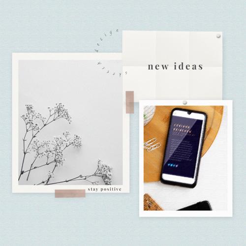 Mood Ideas Corinna Reibchen